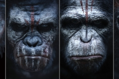 Dawn-Of-The-Planet-Of-The-Apes-Comic-Wallpapers-8