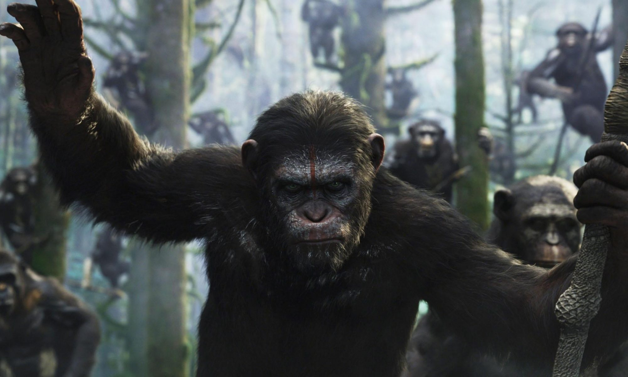 Dawn of the Planet of the Apes Blog